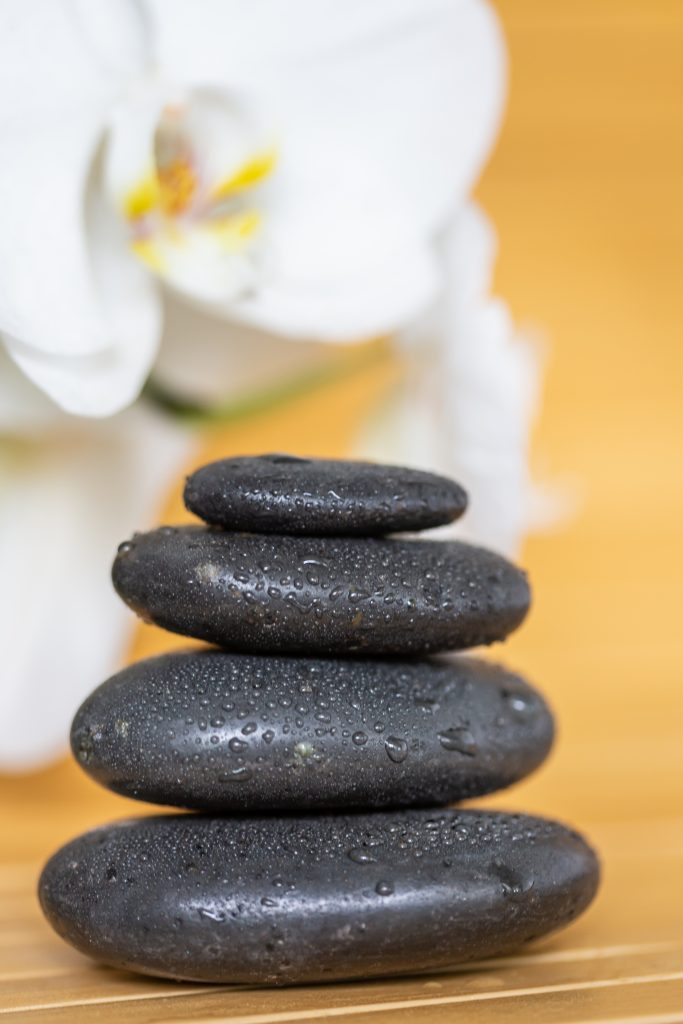 Zen Orchidée